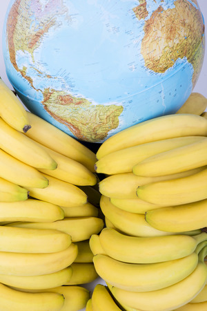 Transporting bananas arround the World Stock Photo