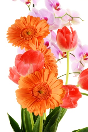 Flower bouquet Stock Photo - 9498403