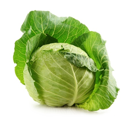 fresh green: Cabbage isolated on white Stock Photo