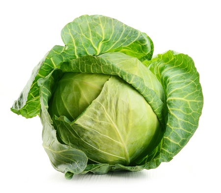 the cabbage: Cabbage isolated on white Stock Photo