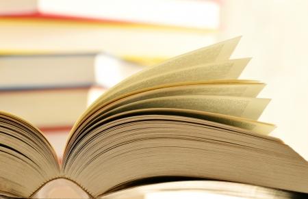 translate: Composici�n con los libros en la mesa