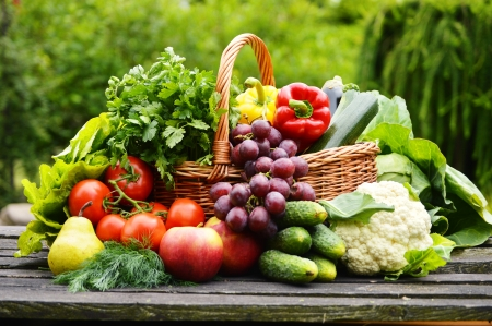 Fresh organic vegetables in wicker basket in the garden photo