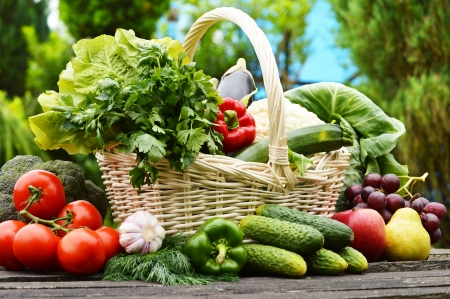 canastas de frutas: Vegetales org?nicos frescos en la cesta de mimbre en el jard?n Foto de archivo