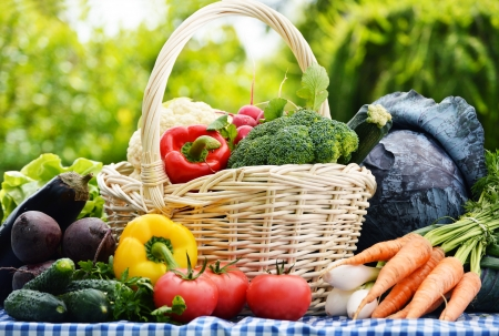 Assorted vegetables in wicker basket in the garden photo