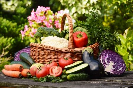 Frisches Bio-Gemüse im Garten