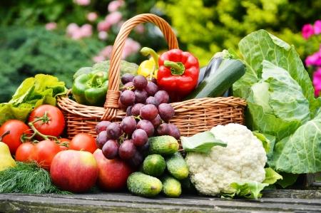 mimbre: Vegetales orgánicos frescos en la cesta de mimbre en el jardín