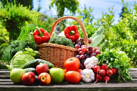 Fresh organic vegetables in wicker basket in the garden Stock Photo - 29355253