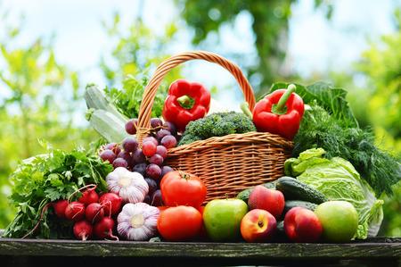 corbeille de fruits: Des l�gumes biologiques frais dans le panier en osier dans le jardin