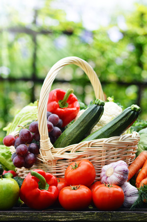 fruits in a basket: Fresh organic vegetables in wicker basket in the garden  Stock Photo