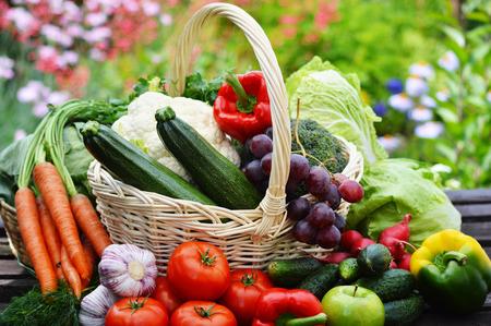 Fresh organic vegetables in wicker basket in the garden  Imagens