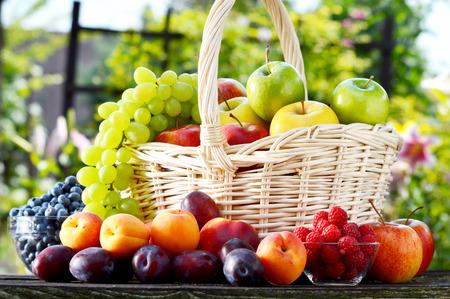 alimentacion balanceada: Frutas org�nicas frescas maduras en el jard�n dieta equilibrada Foto de archivo