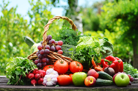 eat the plant: Variety of fresh organic vegetables in the garden.