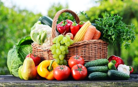Panier en osier avec des légumes crus assortis dans le jardin. Banque d'images