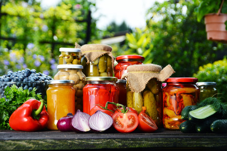 Jars of pickled vegetables in the garden. Marinated food. Reklamní fotografie - 32315020