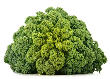 Kale organique fraîche isolé sur fond blanc