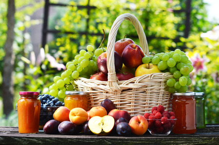 apple basket: Fresh ripe organic fruits in the garden. Balanced diet. Stock Photo
