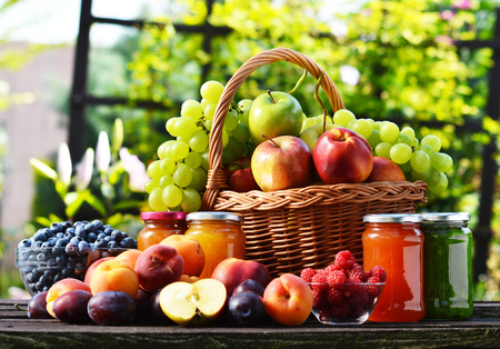 alimentacion balanceada: Frutas orgánicas frescas maduras en el jardín. Dieta equilibrada. Foto de archivo