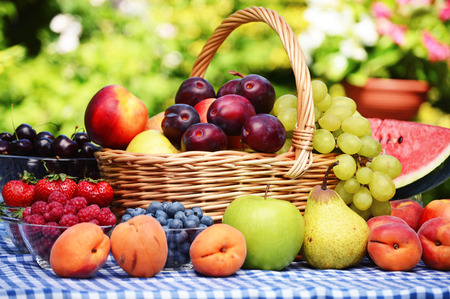 canastas con frutas: Cesta de frutas orgánicas frescas en el jardín Foto de archivo