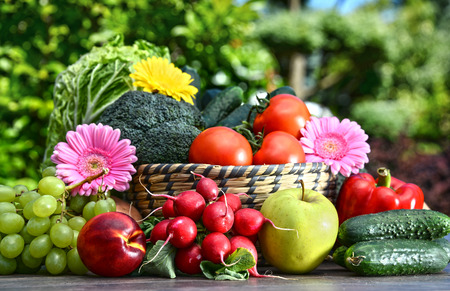 alimentacion equilibrada: Variedad de verduras orgánicas frescas y frutas en el jardín. Dieta equilibrada