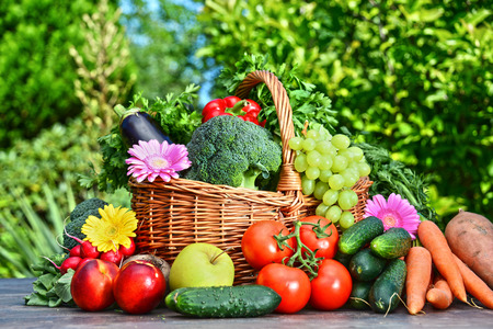 Variety of fresh organic vegetables and fruits in the garden. Balanced diet Stock Photo