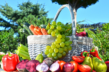 alimentacion equilibrada: Fresh organic vegetables and fruits in the garden. Balanced diet
