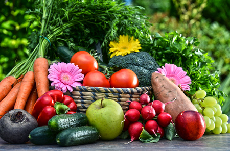 alimentacion equilibrada: Variety of fresh organic vegetables and fruits in the garden. Balanced diet Foto de archivo