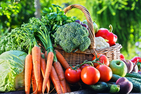 alimentacion balanceada: Variedad de verduras org�nicas frescas y frutas en el jard�n. Dieta equilibrada