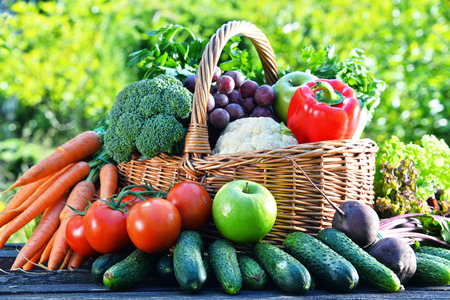 alimentacion balanceada: Variedad de verduras orgánicas frescas y frutas en el jardín. Dieta equilibrada