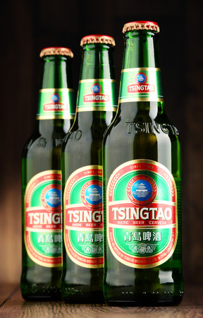 brewery: POZNAN, POLAND - JUNE 22, 2016: Tsingtao beer, product of Tsingtao Brewery, Chinas second largest brewery located in Qingdao in Shandong province
