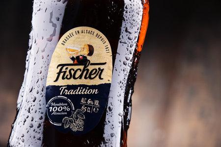 POZNAN, POLAND - JUNE 2, 2017: Fischer Tradition is a brand of beer produced by Fischer brewery in Schiltigheim, France, overtaken by Heineken in 2009