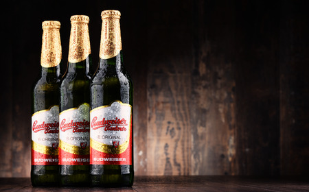 poznan: POZNAN, POLAND - JUNE 2, 2017: Budweiser Budvar one of the highest selling beers in the Czech Rep. exported into more than 60 countries, produced in Ceske Budejovice by Budweiser Budvar Brewery