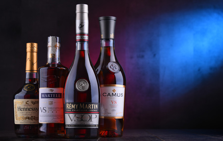 POZNAN, POL - NOV 16, 2018: Bottles of famous Cognac brands including Martell, Camus, Hennessy and Remy Martin. Redakční