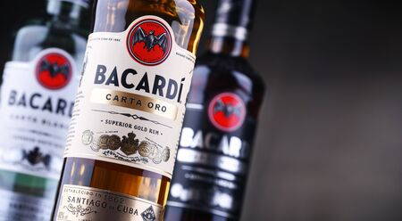 POZNAN, POL - AUG 21, 2019: Bottles of Bacardi rum, a product of Bacardi Limited, the largest privately held, family-owned spirits company in the world, headquartered in Hamilton, Bermuda.