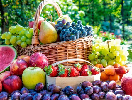 Variedad de frutas frescas maduras en el jardín. Dieta equilibrada