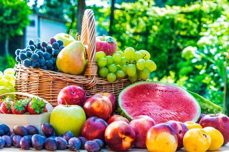 Variedad de frutas frescas maduras en el jardín. Dieta equilibrada Foto de archivo