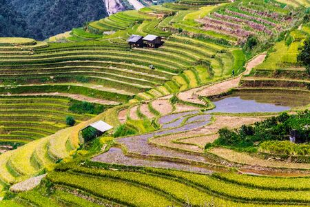 Landscape view of rice fields in Mu Cang Chai District, Yen Bai Province, North Vietnam