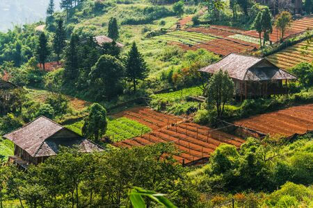 Small scale agriculture in Sapa in Lao Cai Province in northwest Vietnam