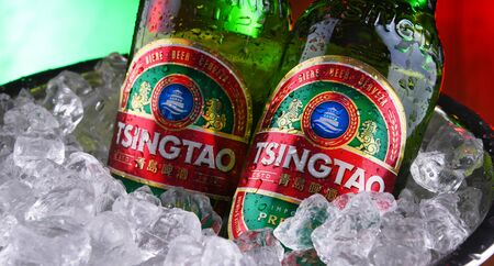 POZNAN, POL - JAN 17, 2020: Bottles of Tsingtao beer, product of Tsingtao Brewery, China's second largest brewery located in Qingdao in Shandong province