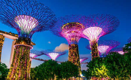 SINGAPORE - FEB 29, 2020: Gardens by the Bay, nature park in the Central Region of Singapore, adjacent to the Marina Reservoir Editorial