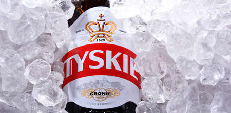 POZNAN, POL - OCT 8, 2020: Bottle of Tyskie, best selling brand of beer in Poland, produced by Kompania Piwowarska, a subsidiary of Asahi Breweries