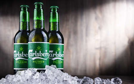 POZNAN, POL - OCT 2, 2020: Bottles of Carlsberg pale lager beer produced by Carlsberg Group, a Danish brewing company founded in 1847 with headquarters located in Copenhagen, Denmark