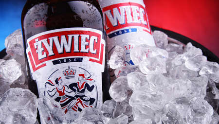 POZNAN, POL - OCT 8, 2020: Bottle and can of Zywiec Beer, a pale lager, which has been brewed in Poland by Zywiec Group, owned by Heineken International since 1994