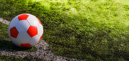 Leather soccer ball on the football pitch.