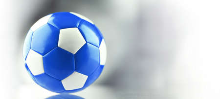 Composition with a leather soccer ball