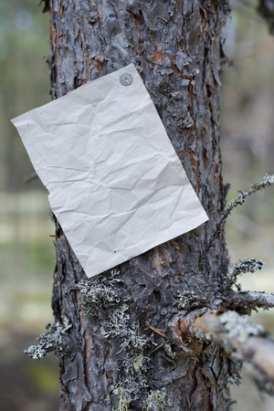 An announcement, a letter, a message on a tree in the forest, an empty blank sheet to fill with text