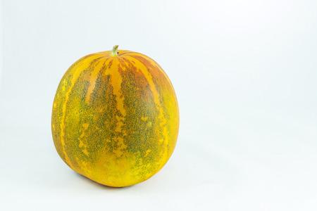 bolus: cantaloupe