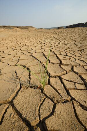 dry cracks in the land, serious water shortages Stock Photo