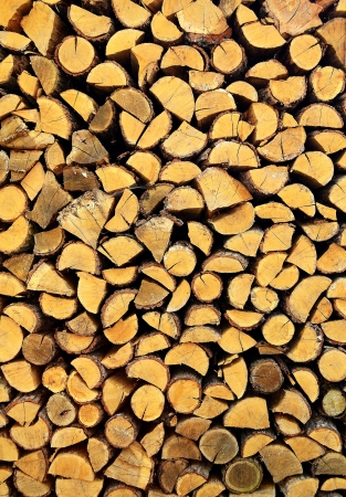 firewood Stock Photo - 17546226