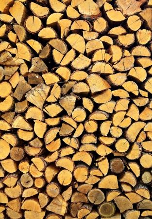woodpile: firewood