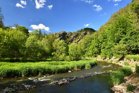 Oslava river. Beautiful landscape. Natural scenery with sky and clouds. Czech Republic, Europe.